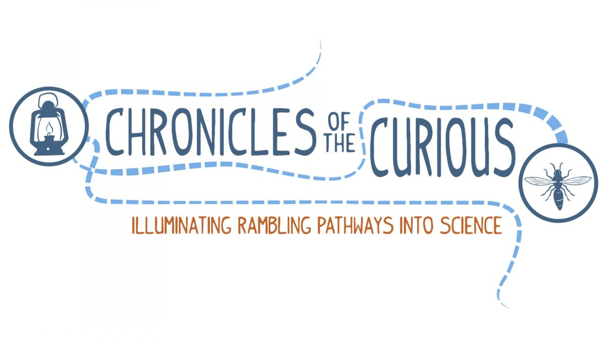 Chronicles of the Curious